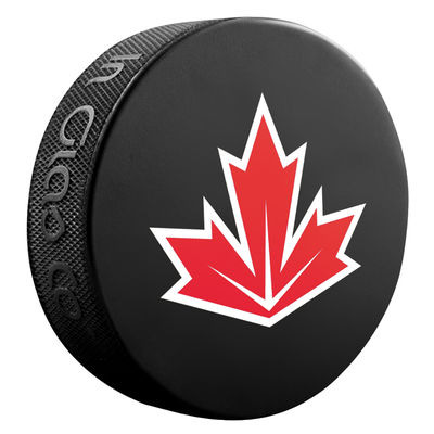 Worthwhile world cup of hockey items puck junk - Simple ways of freshening up spaces without spending too much money ...